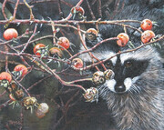 Joyce Trygg, Racoon and Rose Hips